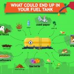 Fossil fuels, electricity, biofuels?